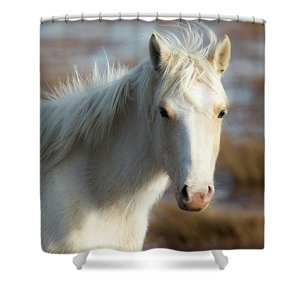 Chincoteague White Pony Shower Curtain