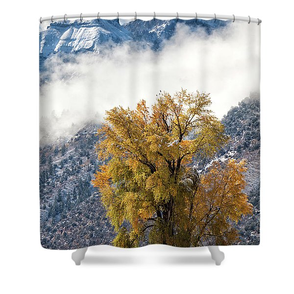 Chipeta And Cottonwood Shower Curtain