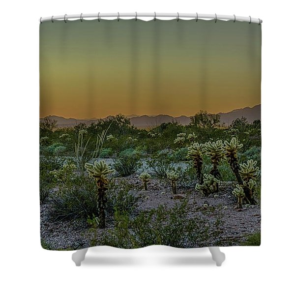 Cholla Desert Sunset Shower Curtain