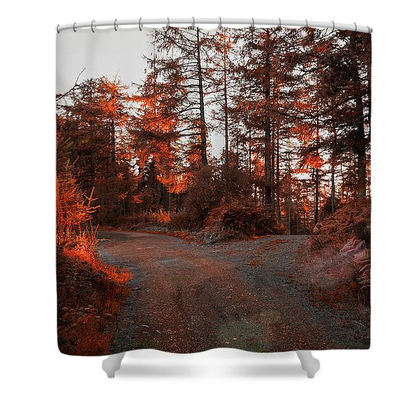 Choose The Road Less Travelled Shower Curtain