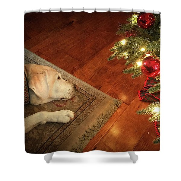 Christmas Dreams Shower Curtain