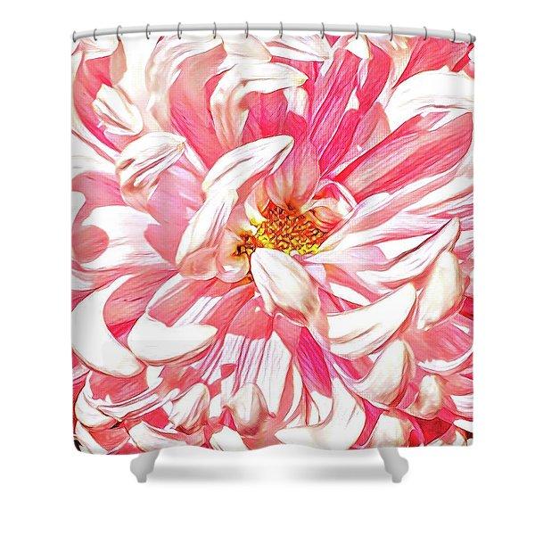 Chrysanthemum In Pink Shower Curtain