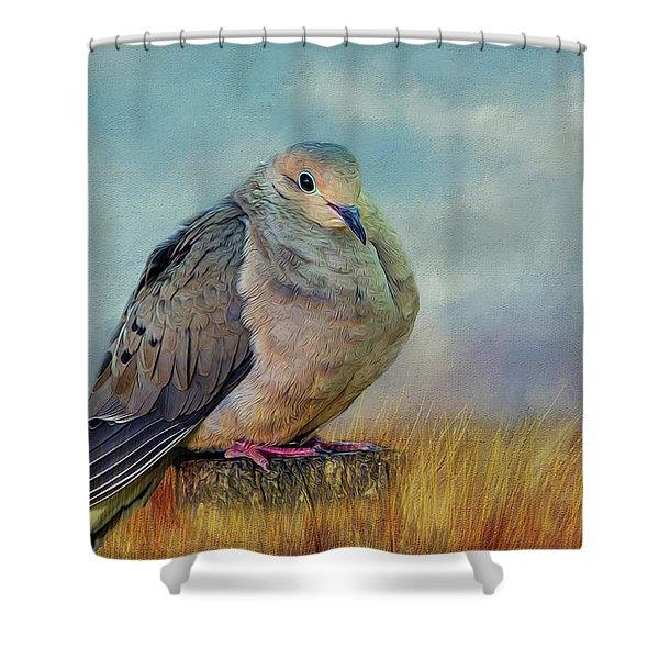 Chubby Dove Shower Curtain