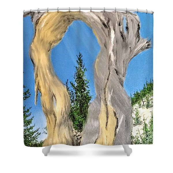 Shower Curtain featuring the painting Church Window by Kevin Daly
