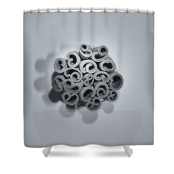 Cinnamon Brain Shower Curtain