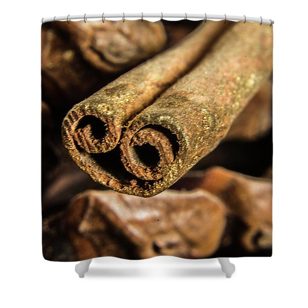 Cinnamon Heart Shower Curtain