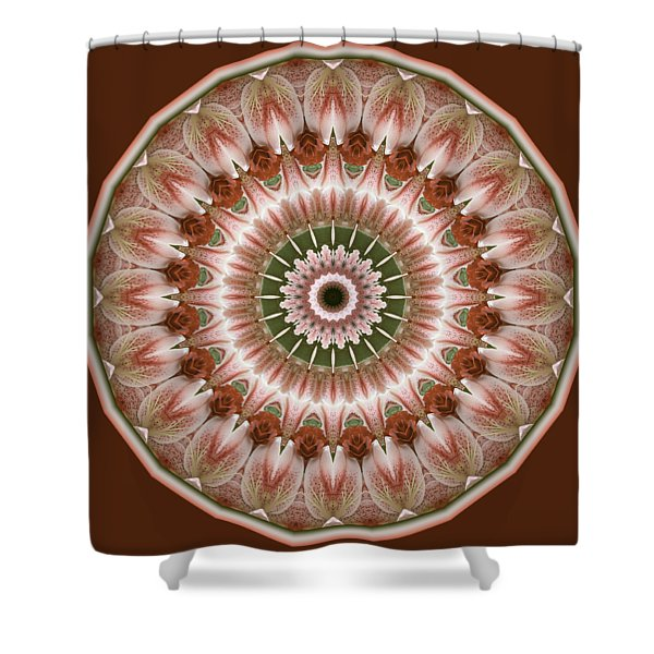 Cinnamon Roses And Thorns Shower Curtain