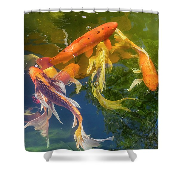 Circle Of Koi Shower Curtain