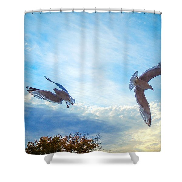 Circling Wings  Shower Curtain
