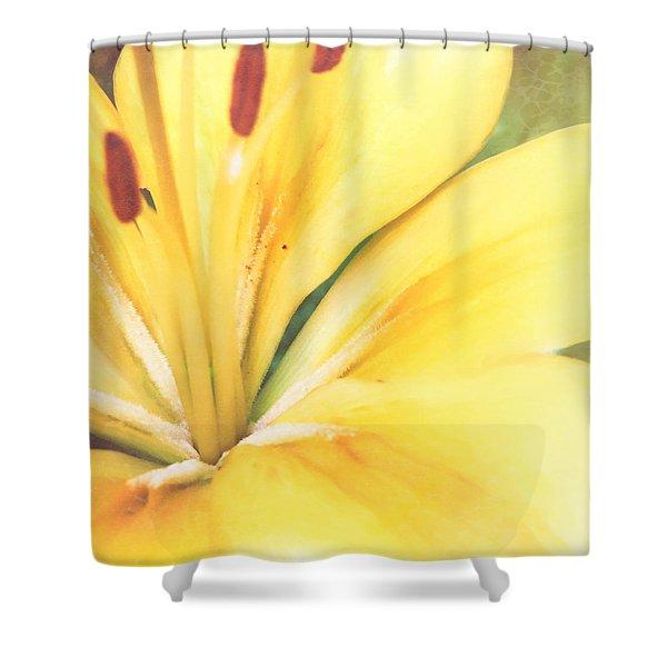 Citrine Blossom Shower Curtain