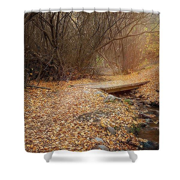 City Creek Shower Curtain