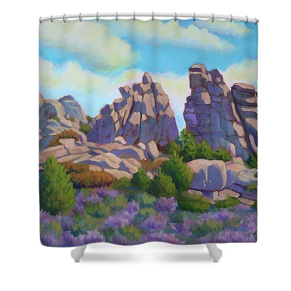 City Of Rocks Shower Curtain