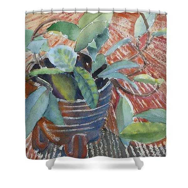 Clay Pot Shower Curtain