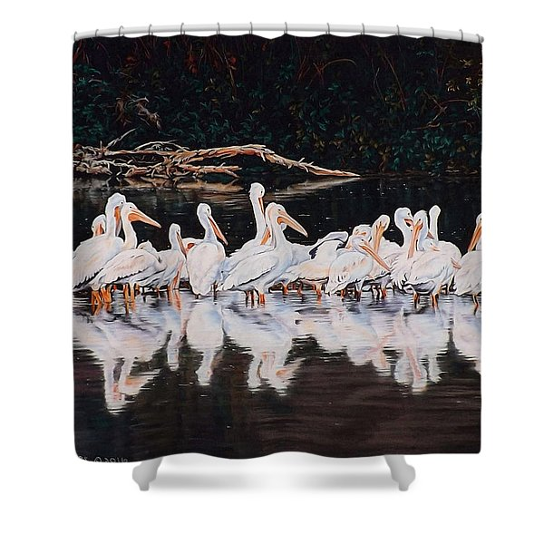 Clear Lake Pelicans Shower Curtain