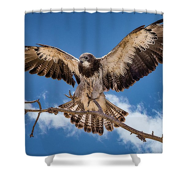 Cleared For Landing Shower Curtain