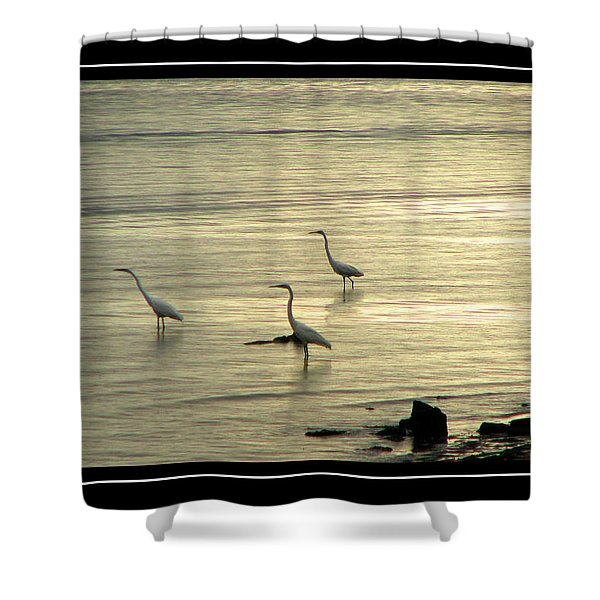 Shower Curtain featuring the photograph Clearwater Beach by Carolyn Marshall