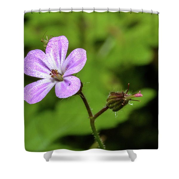 Close Up Of Shining Cranesbill A Shower Curtain