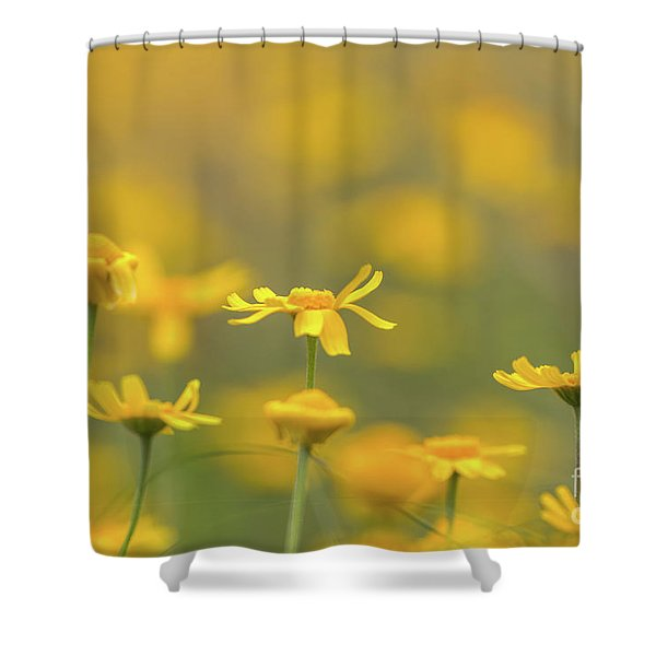 Close Up Of Yellow Flower With Blur Background Shower Curtain