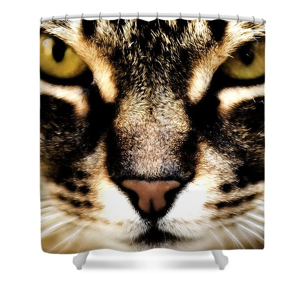 Close Up Shot Of A Cat Shower Curtain