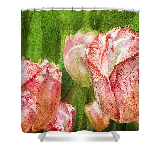 Close Up Tulips Shower Curtain