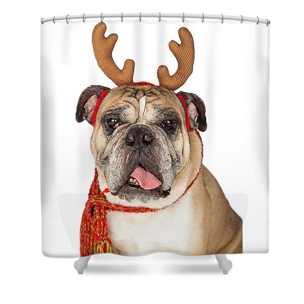 Closeup Of Christmas Reindeer Dog Shower Curtain