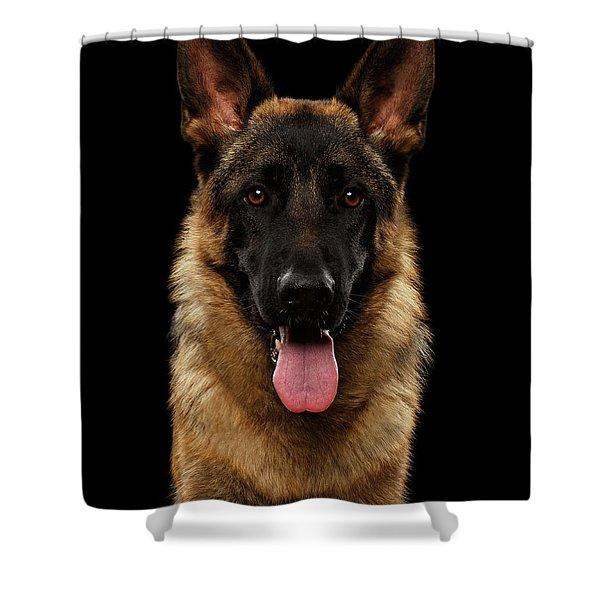 Closeup Portrait Of German Shepherd On Black  Shower Curtain