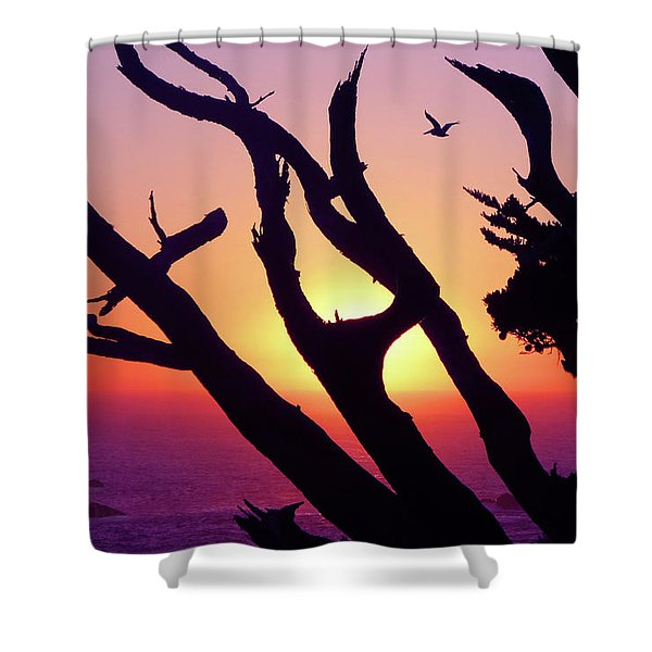 Closing Time Shower Curtain