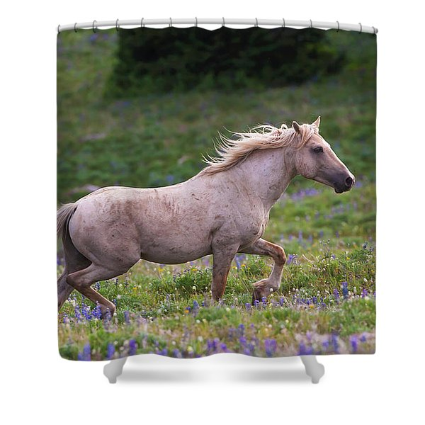 Cloud- Wild Stallion Of The West Shower Curtain