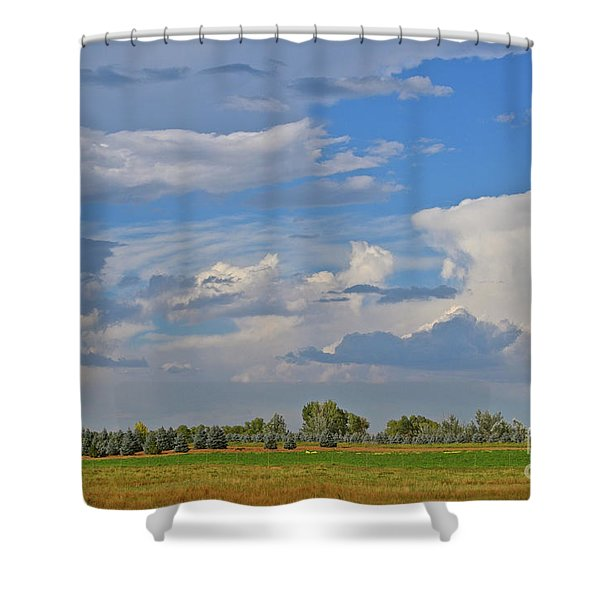 Clouds Aboive The Tree Farm Shower Curtain