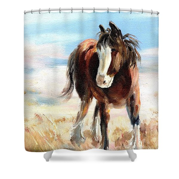 Clydesdale Foal Shower Curtain
