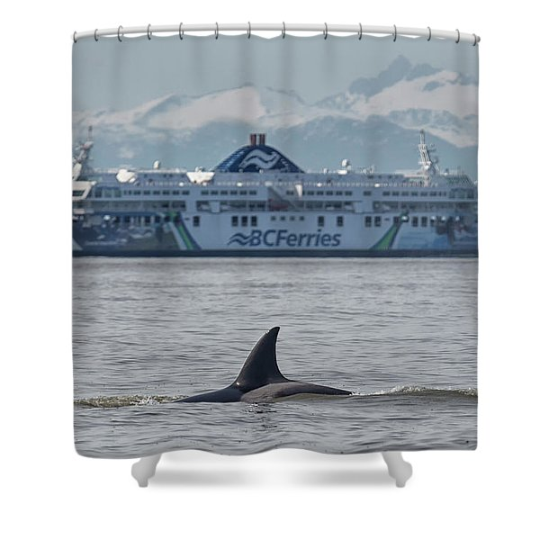 Shower Curtain featuring the photograph Coastal Inspiration by Randy Hall