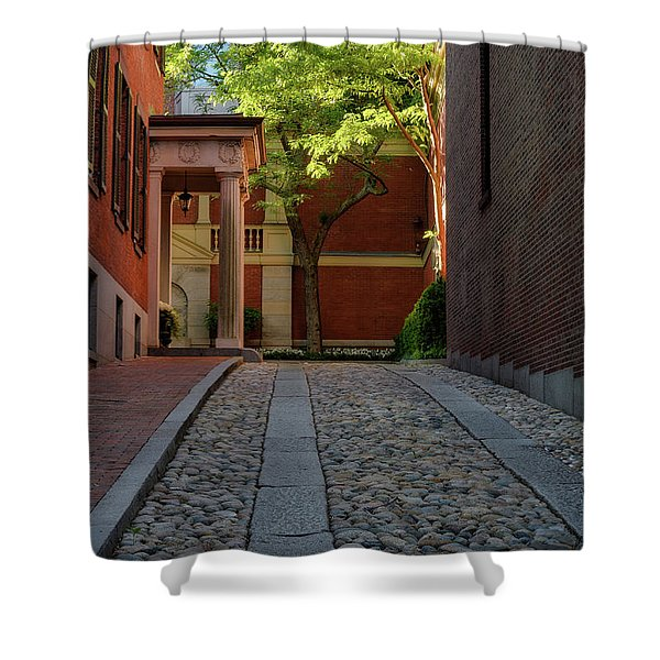 Cobblestone Drive Shower Curtain