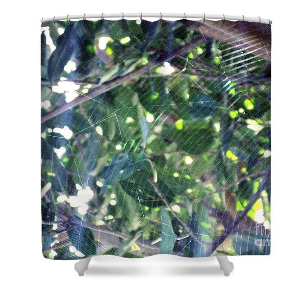 Cobweb Tree Shower Curtain