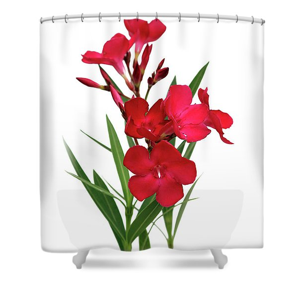 Cog  Nerium Oleander Emile Sahut Shower Curtain