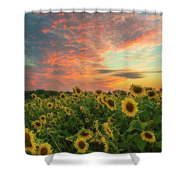 Colby Farm Sunflowers Shower Curtain