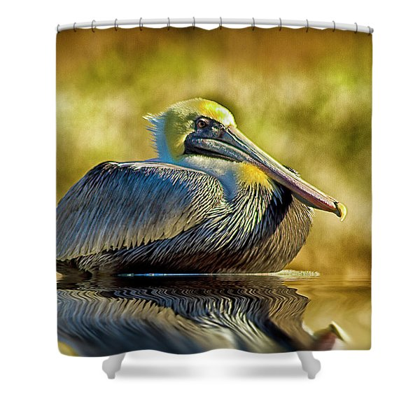 Cold Brown Pelican Shower Curtain
