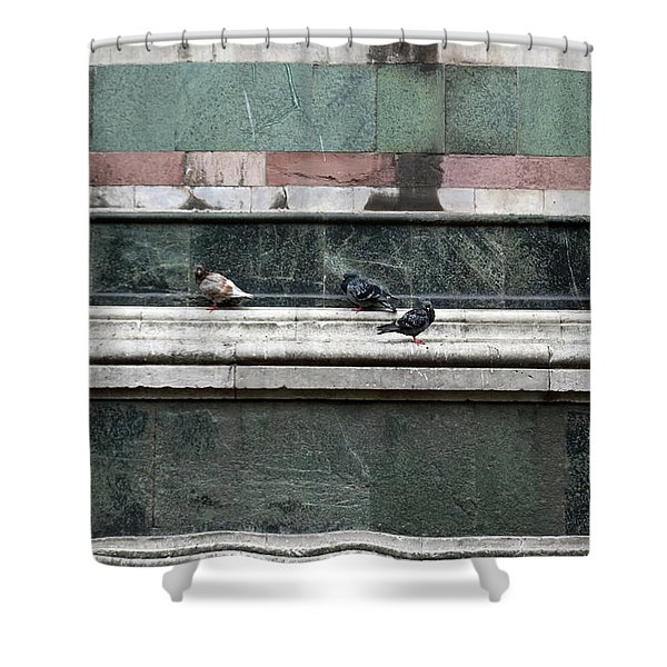 Cold Day In Florence Shower Curtain