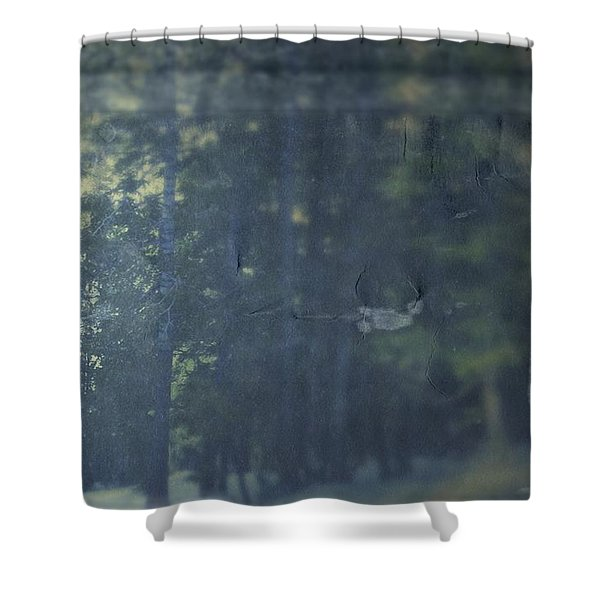 Collect Shower Curtain
