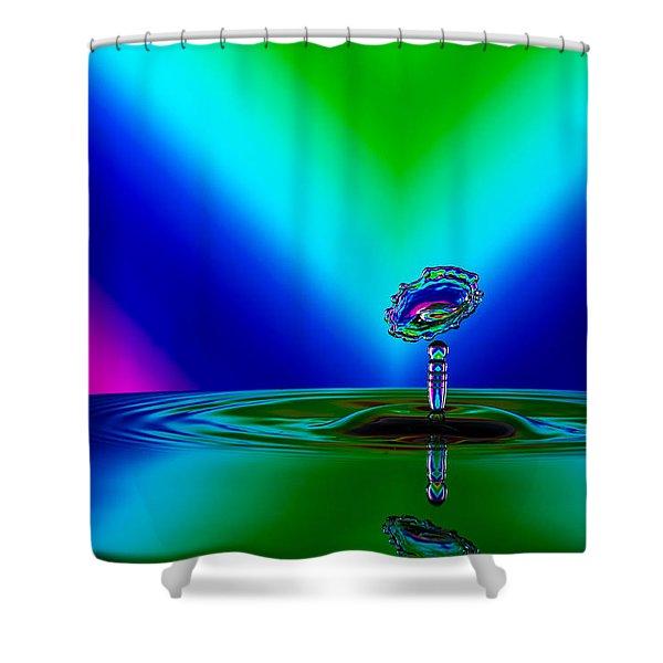 Collision 2016-02 Shower Curtain