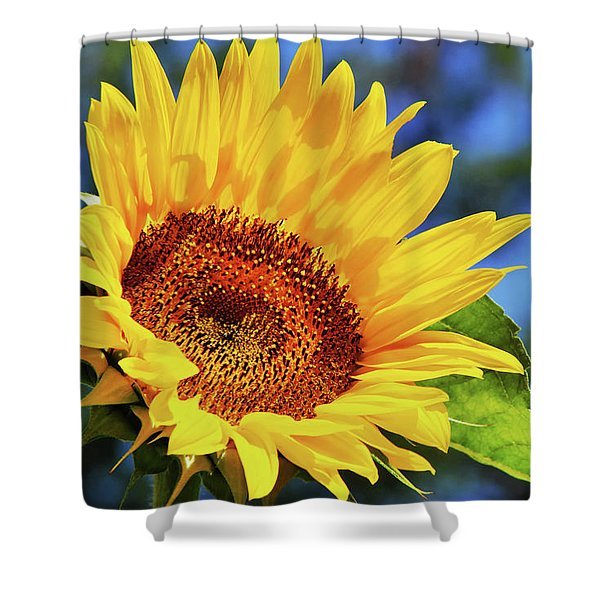 Color Me Happy Sunflower Shower Curtain