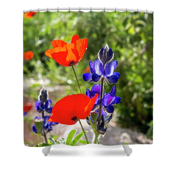 Color Mix 02 Shower Curtain