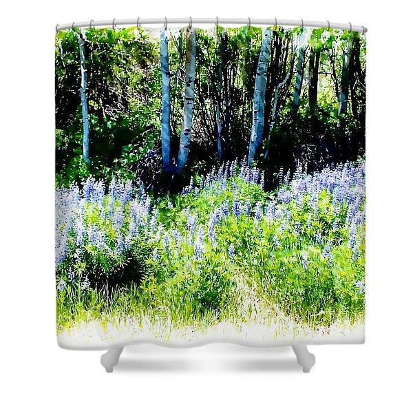 Colorado Apens And Flowers Shower Curtain