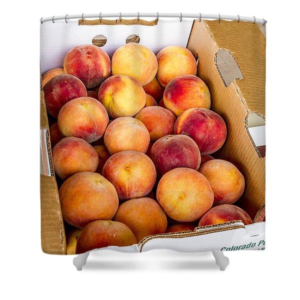 Colorado Peaches Ready For Market Shower Curtain