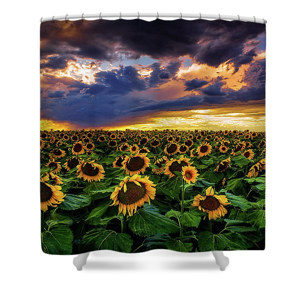 Shower Curtain featuring the photograph Colorado Sunflowers At Sunset by John De Bord
