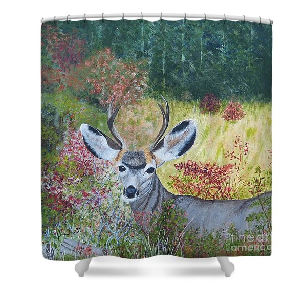 Colorado White Tail Deer Shower Curtain