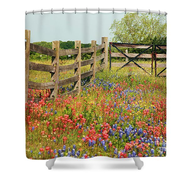Shower Curtain featuring the photograph Colorful Gate by Charles McKelroy