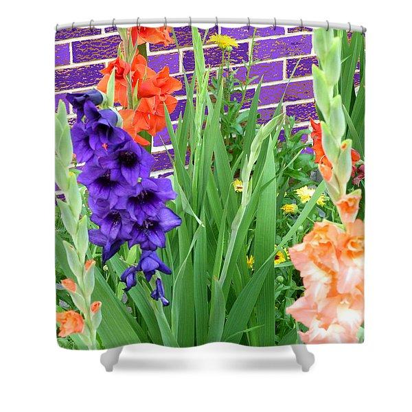 Colorful Gladiolas Shower Curtain