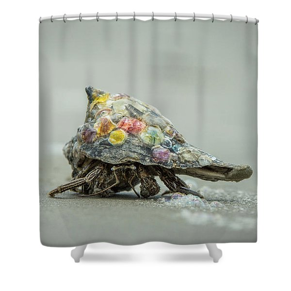 Colorful Hermit Crab Shower Curtain
