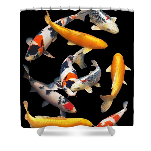 Colorful Japanese Koi Vertical Shower Curtain