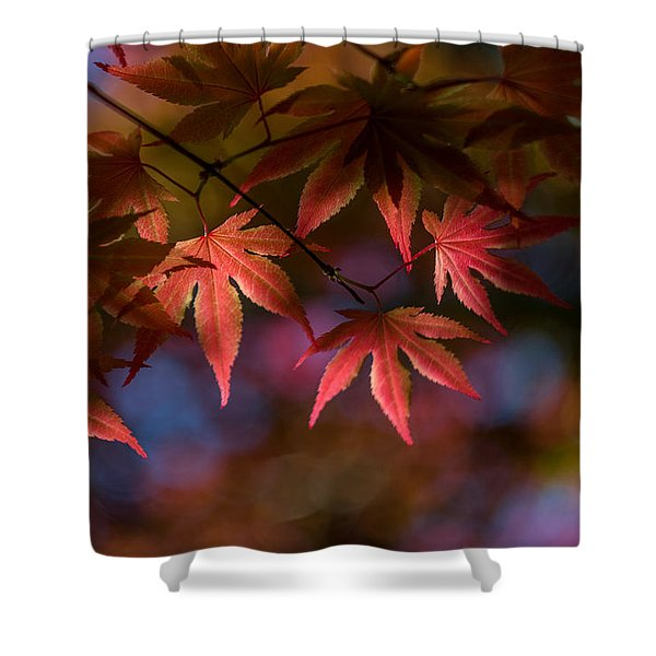 Colorful Japanese Maple Shower Curtain